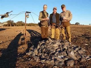 Uruguay bird hunting 39