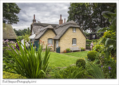 English Cottage (Paul Simpson Photography) Tags: cottage village appleby northlincolnshire rural sonya77 imagesof imageof paulsimpsonphotography photoof photosof july2016 cottagegarden thatchedcottage plants garden backgarden lincolnshire