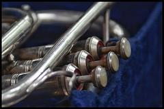 Cornet, Horn. (frankvanroon) Tags: cornet horn music musicinstrument instrument blue silver silverplated old antique nikon d7000 closeup