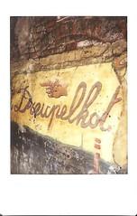 Sur le mur #2 (byNath) Tags: art belgique couleurs rue mur gand instax instantané fujiinstaxmini90néoclassic