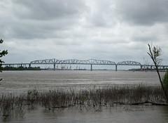 Huey Long Bridge over the swollen Mississippi River (Monceau) Tags: river mississippiriver swollen hueylongbridge 115picturesin2015 46bridge