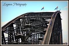 Sydney Harbour Bridge, Australia (Lagnese) Tags: bridge harbor harbour oz sydney australian australia ponte most australien aussie harbourbridge australie bridgeclimb austrlia ausztrlia austrlie