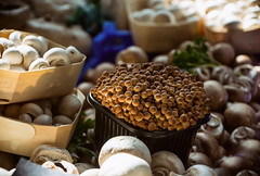 Mushroom Variety (cuppyuppycake) Tags: borough market london england uk fresh food mushrooms fungi