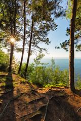 Lake Superior View (Kevin Pihlaja) Tags: lakesuperior keweenaw michigan upperpeninsula summer sunburst trees shoreline sky nature landscape sun lake greatlakes