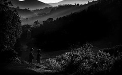 Load on heads. (Padmanabhan Rangarajan) Tags: araku vizag india rural scenes villgers loads carrying lights