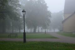 The Solitude of Fog (henriksundholm.com) Tags: park city trees light urban mist church lamp grass fog bench landscape solitude mood moody sad sweden path peaceful lamppost lonely sverige paths eskilstuna gravel forskyrkpark