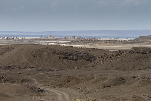 Landscape around lake Abhe, Djibouti