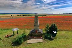 2016-07-10 10-22-06_O21A3425_Prosnes (Balla Jean-Charles) Tags: monument 27e rit coquelicots prosnes marne france champagne 19141918 1418 grande guerre