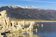 Tufa Lake Mono (fate atc) Tags: california usa pinkfloyd monolake tufa thegreatbasin alkalinelake endorheicbasin