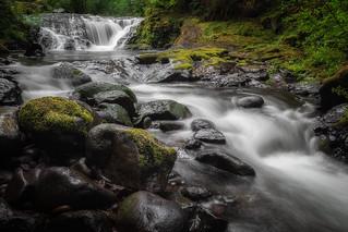 Homestead Falls