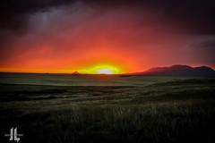 IMG_8663 (larzz4444) Tags: chester montana winterwheat chestermontana gleaner drylandfarming sweatgrasshills joplinmontana wheatharvest sunset