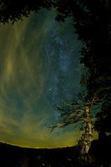 In the deep black III (salviphoto) Tags: stars night sky nightshot milky way voie lacte falling