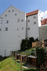 Falknerei Rosenburg (AD2115) Tags: falken falknerei riedenburg rosenburg greifvgel flugshow adler geier eule burg