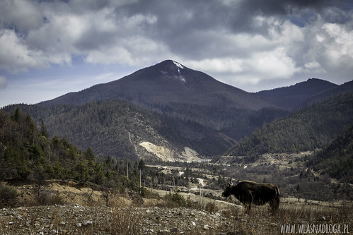 U wrót Tybetu
