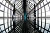 DSC_0100-9 (tamas.doczi) Tags: china skyline nikon skyscrapers shanghai fisheye 中国 尼康 摩天大楼 pudongskyline 上海环球金融中心 鱼眼镜头 theopener wordfinancialcentershanghai