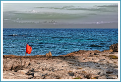 Drapeau rouge (GilDays) Tags: ocean blue red sea mer beach gulfofmexico america mexico rouge nikon flag yucatan bleu mexique caribbean plage akumal drapeau quintanaroo caribbeansea amérique caraibe caraïbe d810 nikond810 golfedumexique