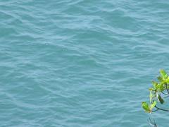 hula hoop sat 015 (Learn, Love, Conserve) Tags: hulahoop saprissa puntaleona feriaverdearanjuez