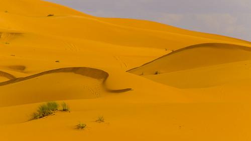 Sahara Formen