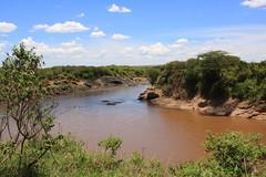 Mara River (Hassaneini) Tags: kenya masaimara marariver كينيا