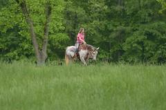 The Tall Grass (Get The Flick) Tags: barnesvillega flintriverarena