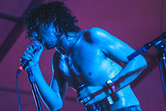FAT WHITE FAMILY BY ROGER HO