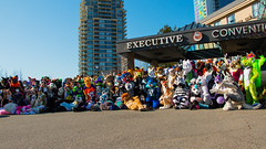 VF 2015 Day 3 Card 5 123sfx (Univaded Fox) Tags: canada hotel furry group columbia parade photograph convention burnaby british executive fursuit 2015 fursuits vancoufur univaded