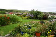 County Clare (abbyef) Tags: ireland countyclare garden doolin