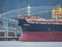 Ecoan G.O. Bow (Stirrett6) Tags: ship cargo bow northvancouver moored ecoango