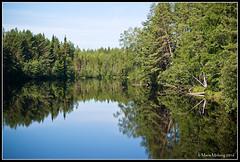 Ore River Mirror (mmoborg) Tags: skog woods näckrosor waterlilys sweden sverige mmoborg