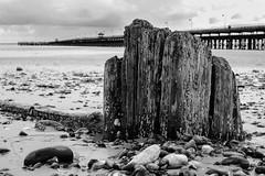 Ryde Pier (Speedy349) Tags: bw beach pier blackwhite sand railway isleofwight groyne ryde