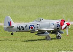 TopGun_2016_day5-339 (ClayPhotoNL) Tags: plane model sale rc fte
