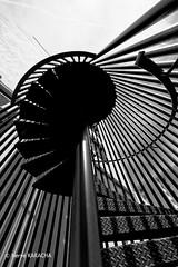 BAGNOLET Escalier de secours-2 (hervekaracha) Tags: france stairs nikon bagnolet escaliers d610 contreplongee samyang14mm
