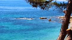 Mediterrani explcit (lluiscn) Tags: blue sea beach azul marina mar mediterraneo playa vila bleu pi marines blau pino pv aigua rocas platja verd roques villajoyosa pasvalenci mediterrani lavilajoiosa lavila mediterrnia azurro marinabaixa aiguamarina