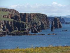Braewick Cliffs from Caravan Park, Shetland, 21 July 2016 (AndrewDixon2812) Tags: caravan park campsite cafe braewick hillswick northmavine eshaness shetland bay headland peninsula cliffs