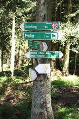 Hike from Maibrunn to Klingldorf, Kolmberg, Ahornwies, Hinterwies, St. Bernard and back to Maibrunn (onno de wit) Tags: germany bayern deutschland danube duitsland donau bayerischerwald beieren stenglmar sanktenglmar beiersewoud maibrunn bavarianwoods