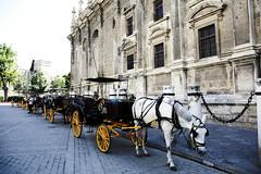 Seville (HDH.Lucas) Tags: horse spain carriage seville lucas espana cannon