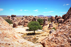 (K. Sawyer Photography) Tags: cityofrocksstatepark cityofrocks cityofrocksnewmexico statepark rockformations rocks boulders volcaniccalderas trees