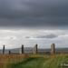 20160708-IMG_6205 Ring Of Brodgar Mainland Orkney Scotland.jpg