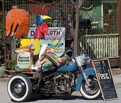20110404-LRC04702.jpg (ellarsee) Tags: aspectratiosquare rooster motorcycle benlomond facebook sign trike flickr jcdilllikes