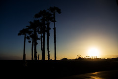 Palm Sunset (Aaron J Barber) Tags: palm sunset orange blue sky sun smog glow silhouette beach path usa la losangeles santamonica summer sea ocean pacific pier rollercoaster amusement warm