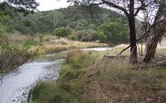 2556 Mayfield Road, Tarago NSW