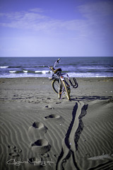 Summer scene  (higehiro) Tags: beach shonan japan fujisawa beachcruiser d800