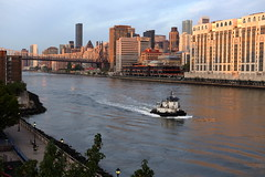 Morning Light, Tugboat (Roosevelt Island/NYC) (chedpics) Tags: newyork rooseveltisland eastriver