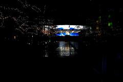 20110113 Berlin Mitte Potsdamer Platz Bahnhof Nacht (24) (j.ardin) Tags: deutschland germany allemagne alemania berlin mitte zentrum potsdamerplatz bahnhof station trainstation gare estacin  stanice stadja nacht night nuit noche  noc