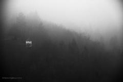 Slovenia (miglio) Tags: blackandwhite bw fog slovenia nebbia