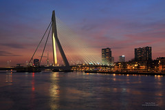 Erasmus Bridge (Peet de Rouw) Tags: city holland night twilight rotterdam nacht dusk bluehour erasmusbrug erasmusbridge canonef24105mmf4lisusm koningshaven denachtdienst canon5dmarkiii peetderouw