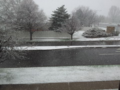 March 25, 2015 - A quick shot of snow in Broomfield. (David Canfield)