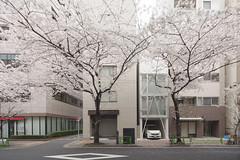 HATCHOBORI・OU-AN: Ken Yokogawa, Tokyo, Dec. 2006 (wakiiii) Tags:
