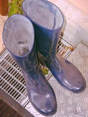 schmutzige Gummistiefel (yvonne_2.0) Tags: blue down worn welly wellies galoshes rubberboots gummistiefel gumboots wornout rainboots gern regenstiefel getragen verschlissen