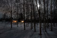59-Moonlight_Cottages2 copy (Beverly Houwing) Tags: snow building night forest suomi finland frozen fullmoon lapland moonlight kukkola bungalow kukkolankoski